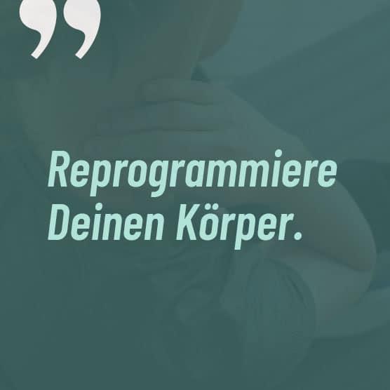 GNP-Reprogrammiere